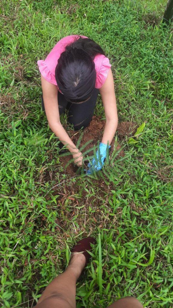 Jornada de Reforestación con el grupo Ecolibre